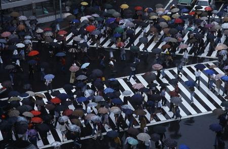 Продажа зонтиков — прибыльный бизнес!